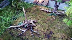 画像2: 神奈川県川崎市 蒲池様の   使用例