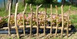 流木フェンス【設置高50cm用巾1・0m】