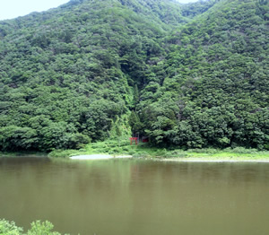 最上川の写真