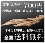 流木商品1万円以上お買い上げで送料無料