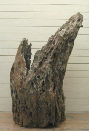 画像1: 大型変形幹流木
