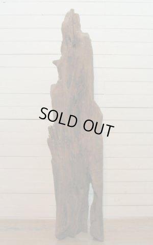 画像2: 大型変形幹流木